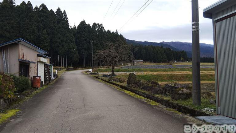 若子坂林道