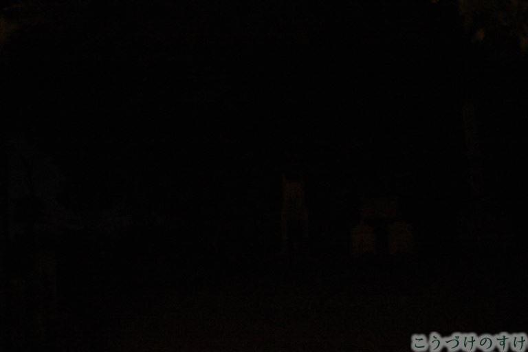 花換の小道の夜