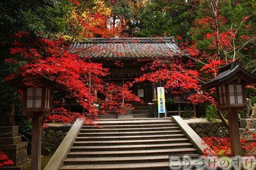柴神社紅葉